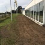 ny græs1